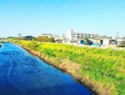 【激安】埼玉県川口市でおすすめの粗大ゴミ回収業者5選